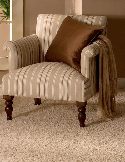 Image of clean protected carpet and upholstery